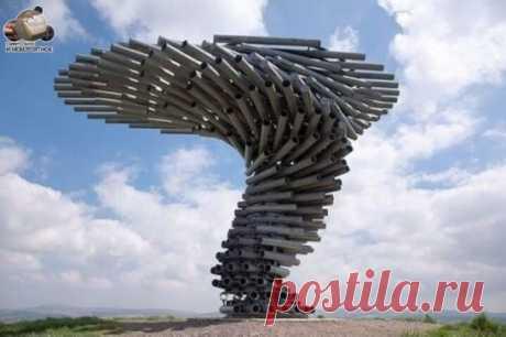"""Это строение носит название """"Поющее Дерево"""", находится в городе Бернли, Великобритания.  Дующий ветер создает музыку."""