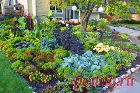 КОГДА ОГОРОД САМ ЗА СОБОЙ УХАЖИВАЕТ... Все наши предки жили в прекрасных садах - родовых поместьях. Урожай они получали в огромном достатке, при этом не затрачивая времени на уход за своим огородом и садом. Высаживалось всё так, что сад са…
