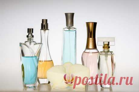 ¿Cómo prolongar la firmeza parfyuma?