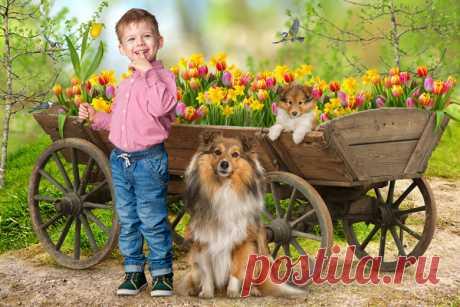 PSD фотошаблоны и коллажи, оформление фотографий: Весенний шаблон к 8 марта