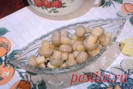 На кухне: Маринованные шампиньоны