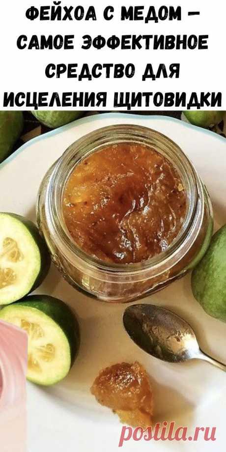 Фейхоа с медом — самое эффективное средство для исцеления щитовидки - Полезные советы красоты