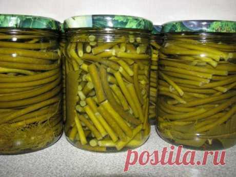 Рецепты зелени чеснока на зиму - Сайт о
