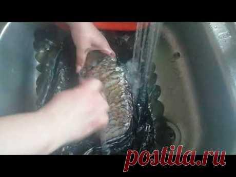 Как без ножа очистить рыбу от чешуи за одну минуту