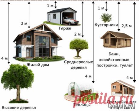 Правила и нормативы строительства гаража на земельном участке | 6 соток