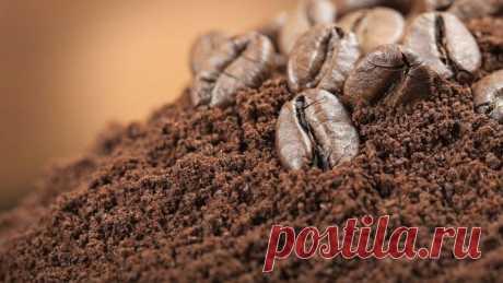 15 полезных способов использования кофейной гущи