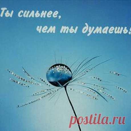 Nastia OOO