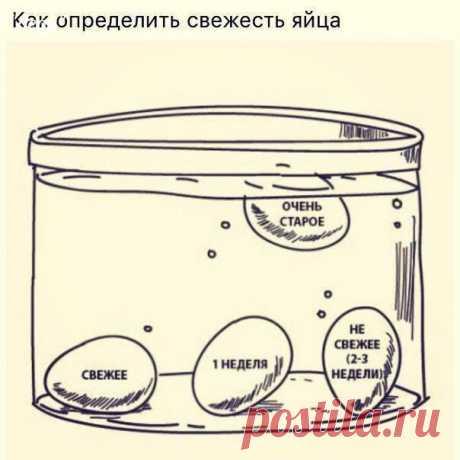 Полезно знать. Как определить свежесть яйца.