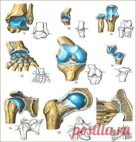На этом рецепте помешан весь мир! Лечит ваши колени и восстанавливает кости и суставы в кратчайшие сроки!  Сегодня мы научим вас, как подготовить мощное средство для коленного сустава, костей и от боли в суставах, от эффекта которого даже врачи всего мира поражены.  Колени являются одной из частей нашего тела, которые больше всего страдают с возрастом, потому что они поддерживают более 80% от массы нашего тела, когда мы стоим. Кроме того, суставы также изнашиваются из-за с...