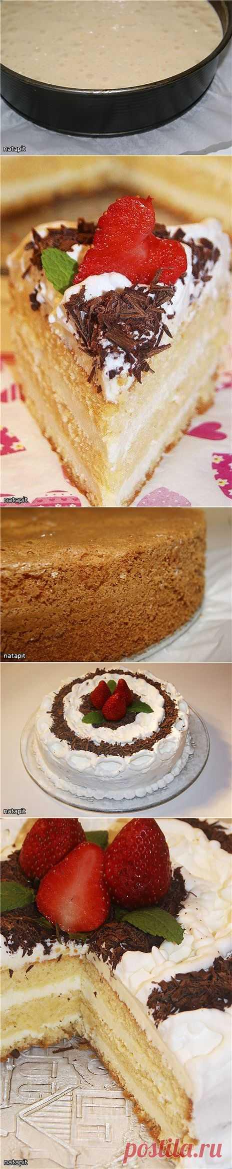 "Торт ""Белый трюфель"" Tartufo Bianco."