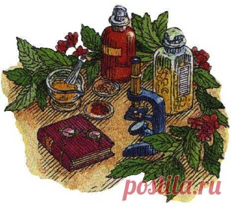 Простуда и грипп: http://grippro.ru/lechenie-nasmorka-narodnymi-sredstvami.html