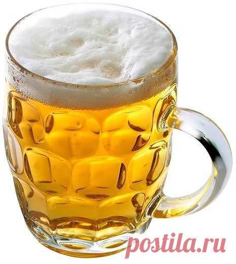 (+1) тема - Вредно ли пить пиво? | Среда обитания