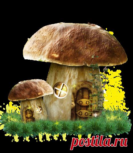 Сделать, открытка грибочки супер