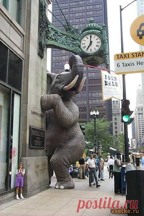 Памятник слону в натуральную величину в Чикаго