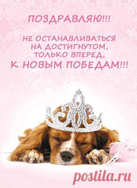Поздравление с днем рождения принцессе в прозе