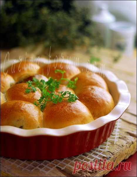 La cocción asombrosa | las Anotaciones en la rúbrica la cocción asombrosa | el Diario галина5819
