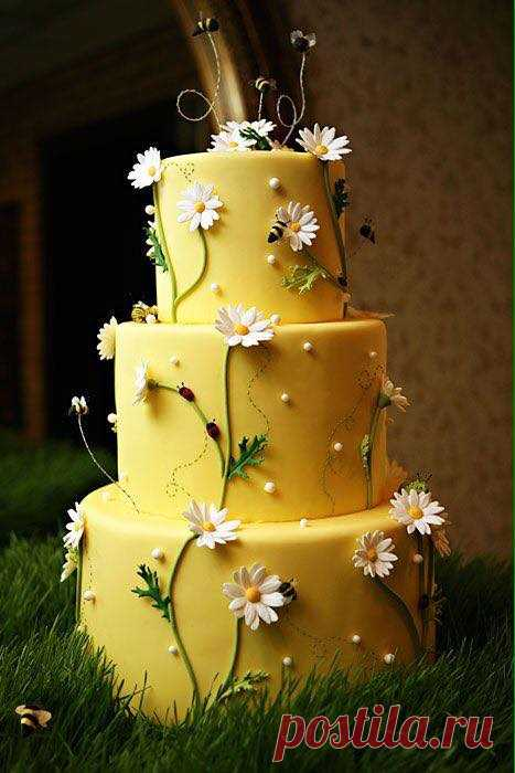 (2) CakeDeco - we learn to decorate cakes.