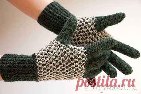 планета вязания перчатки соты мастер класс по вязанию перчаток