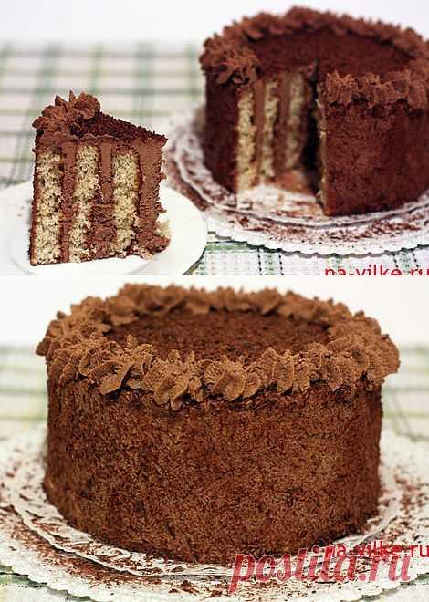 Торт бисквитный с трюфельным кремом.
