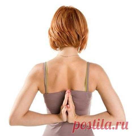 How to keep a backbone healthy?