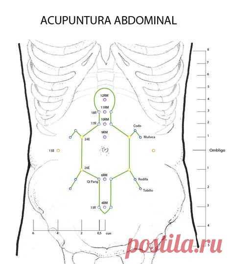 La acupuntura abdominal es un nuevo método de acupuntura desarrollado por el doctor Bo Zhi Yua