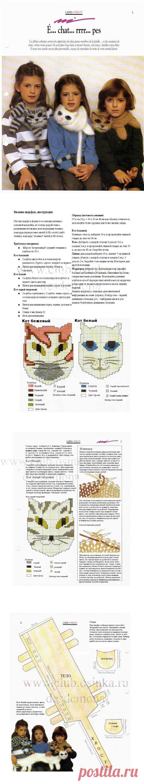 Шарфы-коты