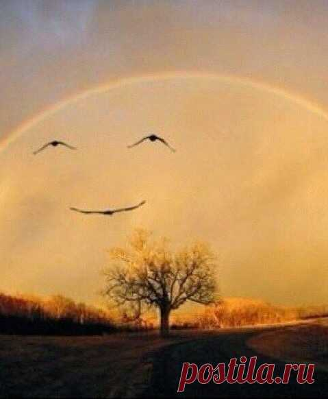 Meet each new day with a smile and he will reciprocate