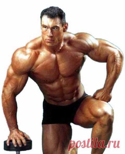 Можно ли превратить жир в мышцы? Мышцы и жир, в чём отличие