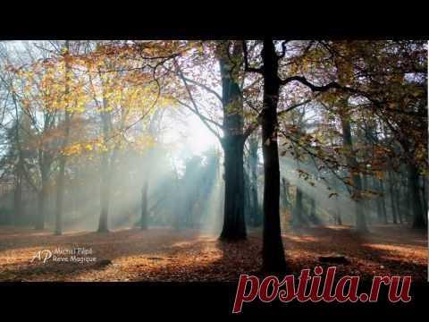 Красота леса | ЛЕС БИСЕРА lesbisera.ru