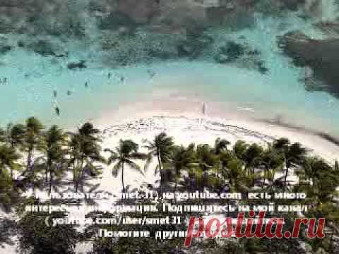 РЕПТИЛОИДЫ - СКРЫТЫЕ ХОЗЯЕВА ПЛАНЕТЫ ЗЕМЛЯ (часть 2) - YouTube