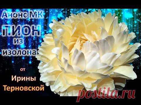 Анонс МК ПИОН