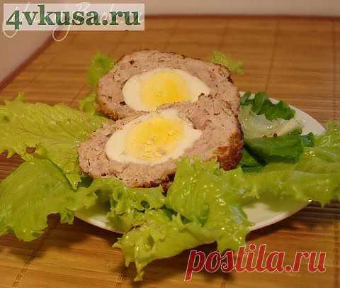 Яйца по-шотландски   4vkusa.ru