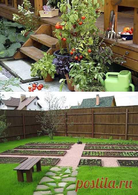 Разнообразные варианты декора для сада и огорода