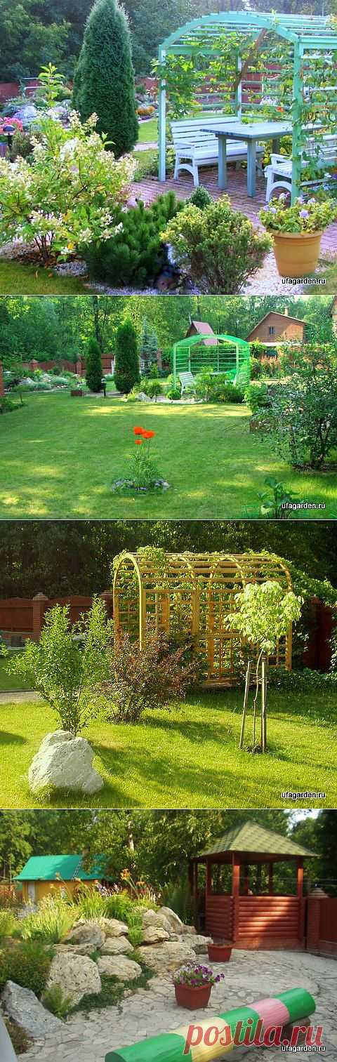 Беседка пергола.  | Дачная жизнь - сад, огород, дача