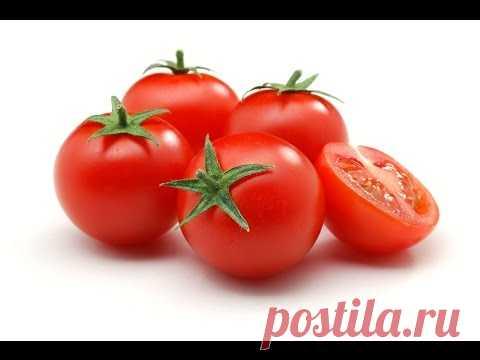 Advantage of Tomatoes. Ketchup.