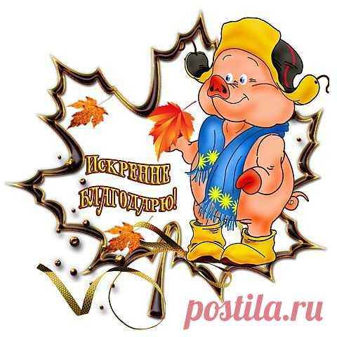 1744 (480x480, 267Kb) / Разное / Бабушкины советы / Pinme.ru / Ольга Коваленко