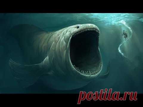 5 Cамых Загадочных Подводных Звуков, Когда-Либо Зарегистрированных