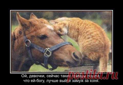 миром правит Любовь!..