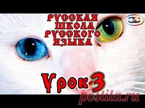 Russian School of Russian Lesson 3, Chellendzh and Text, Vitaly Sundakov
