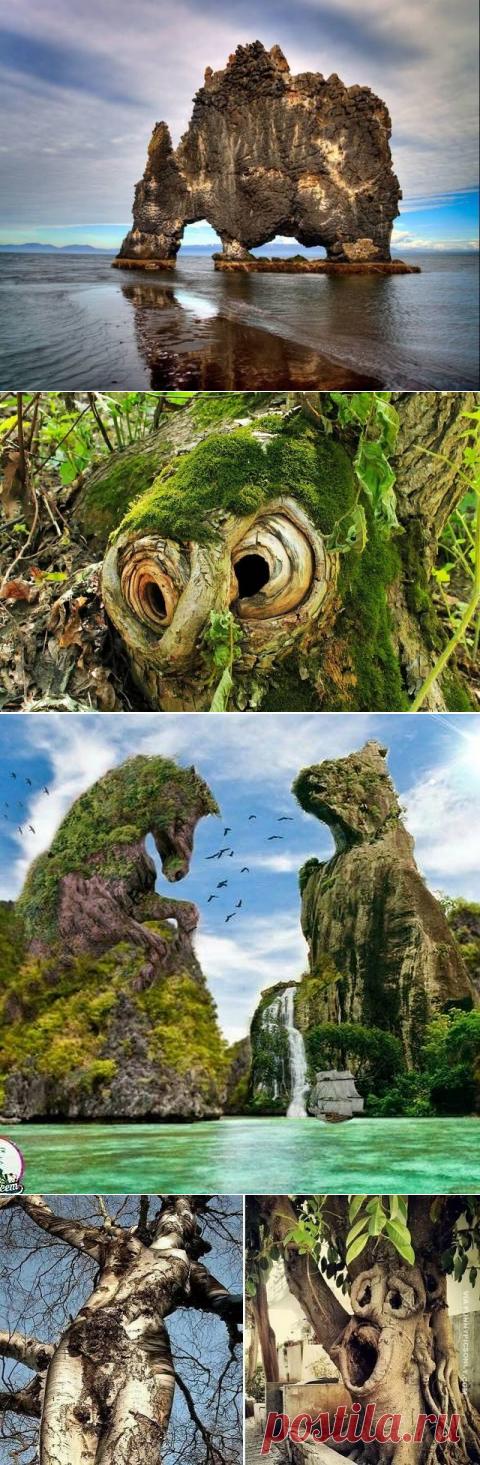 Природные чудеса нашей планеты.