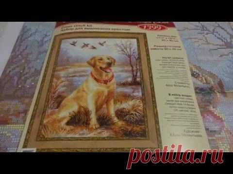 Обзор набора Риолис Лабрадор 1399 (заказ в магазине Bobbin)