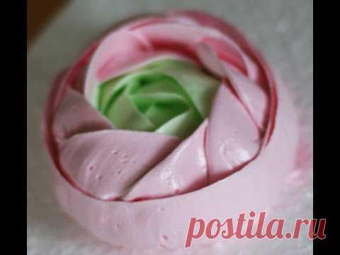 Malaysian rose option 1
