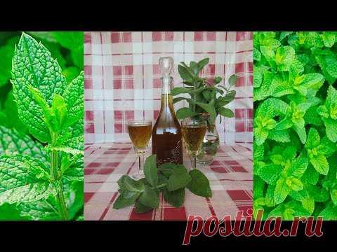 Мятный ликёр (+ВИДЕО) - Затейка.com.ua - рецепты вкусных десертов, уроки вязания схемы, народное прикладное творчество