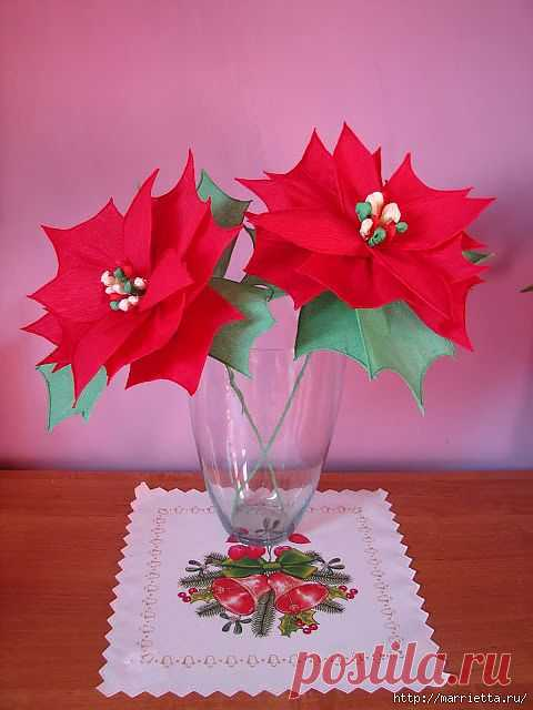 Christmas star the POINSETTIA from a crepe paper.