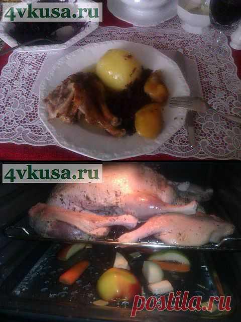 Праздничная утка с яблоками и имбирем. | 4vkusa.ru