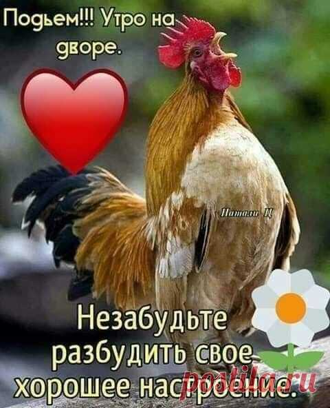 Фотоальбом Доброе Утро.., День.., Вечер! группы •●๑❤Красивый форум❤๑●•