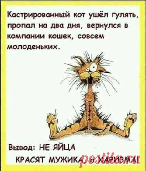 tretsya-o-devushku-na-kontserte-eroticheskie-roliki-zrelie-zhenshini