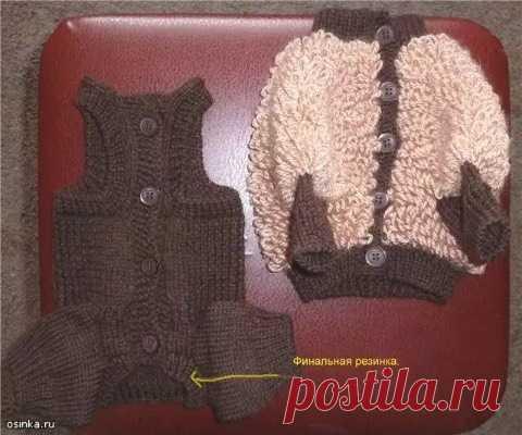 вяжем штанишки для собаки форум наши йорки и их друзья вязание