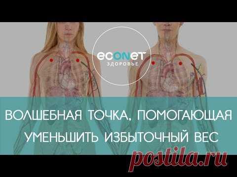 Ku el Fan - el punto MÁGICO del peso excesivo | Econet.ru