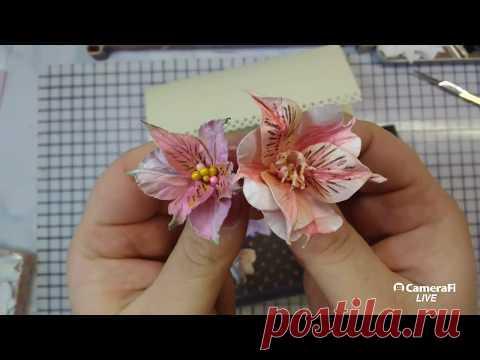 Альстромерия для скрапбукинга + конверт на свадьбу